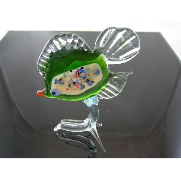 Fisch 13-16 - Glastier