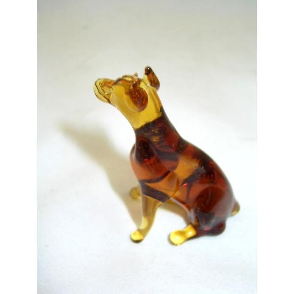 Dobermann -Hund-Rassehund-b8-1-11