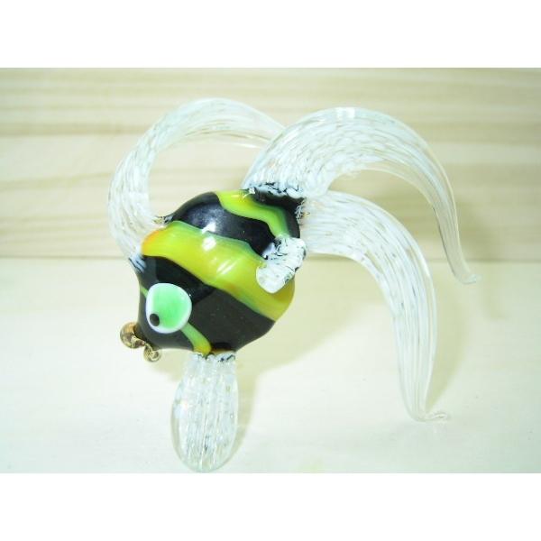 Engelfisch 3 - Glastier