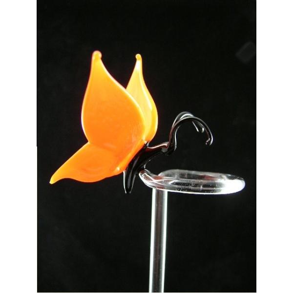 Orchideenstab-Schmetterling orange-2Fl