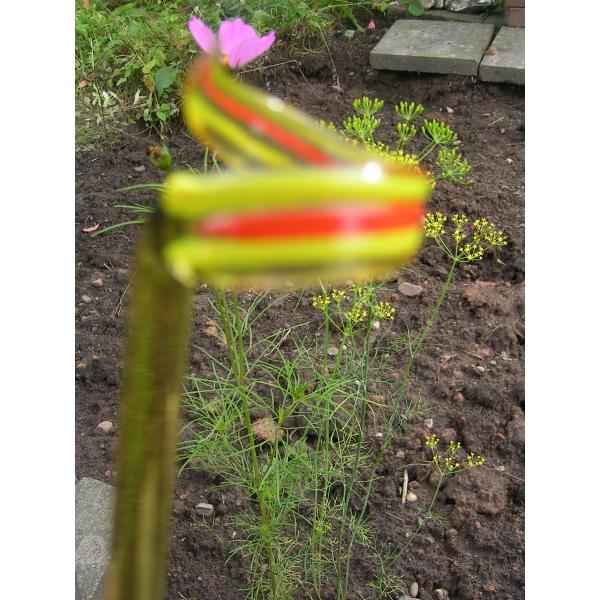 Orchideenstab mit Streifen Gelb Orange - Blumenstab Rankhilfe Blütenstütze - V 49 Deko Garten Blumen