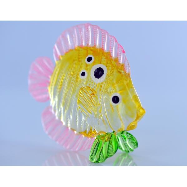 Bunter Glasfisch - Zierfisch Gelb 7 x 3 x 6.5 cm - Korallenfisch