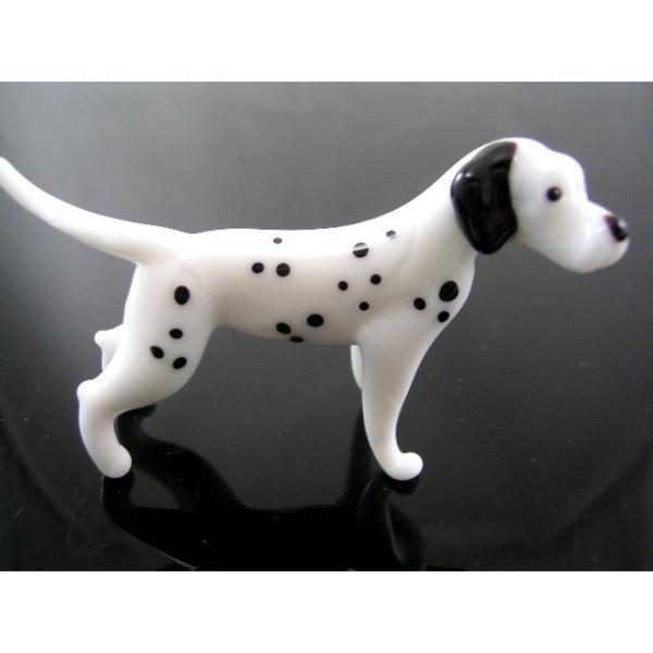 Hund-Dog-Dalmatiner-b8-7-5 - Glastier