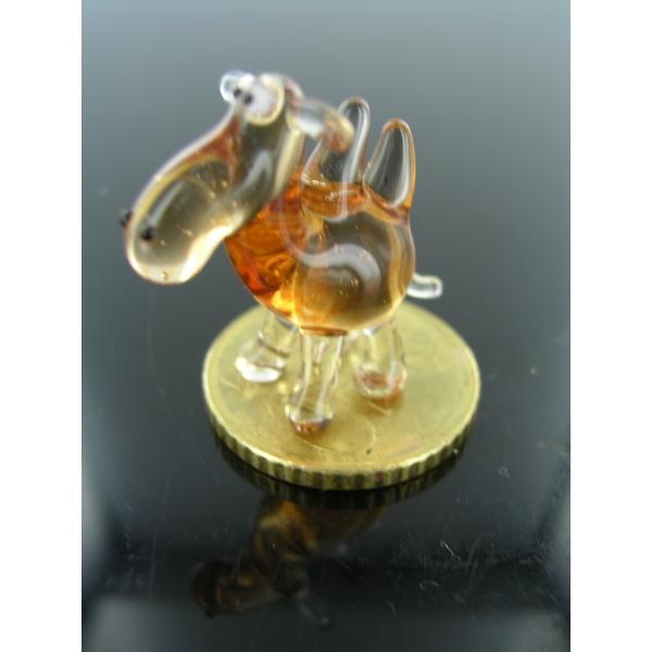 Kamel mini 2-Glastier-k-12