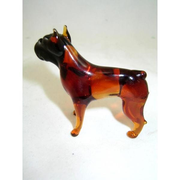 Boxer -Hund-Rassehund-b8-8-14