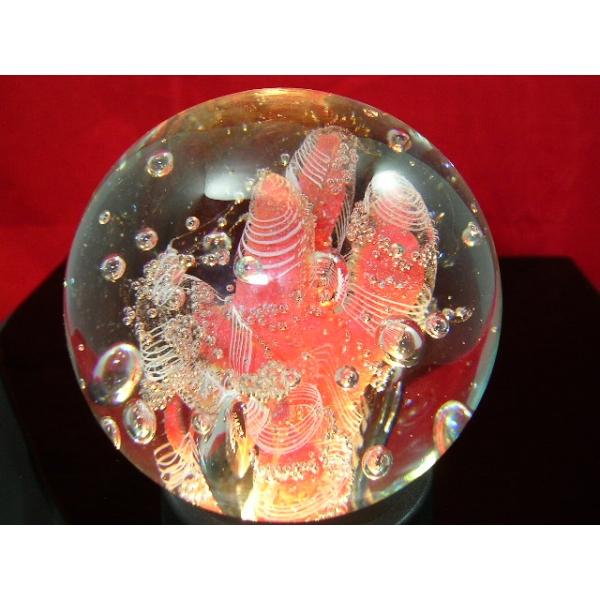Briefbeschwerer Paperweight-Korallen-exklusiv 4