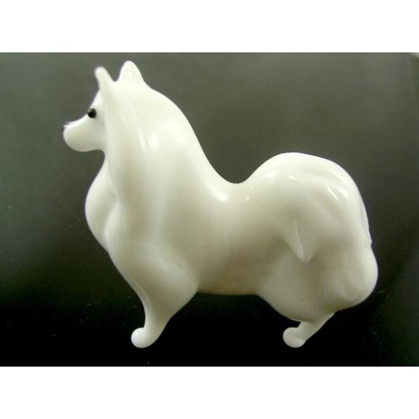 Hund-Dog-Spitz-b8-6-1- Glastier