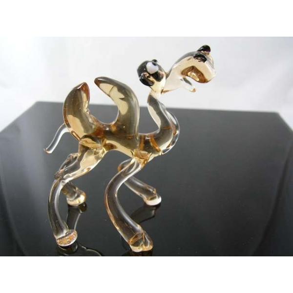 Kamel (camel)-7-11 - Glastier